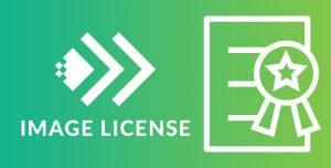 Giấy phép hình ảnh - Image License